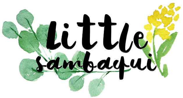 littlesambaqui